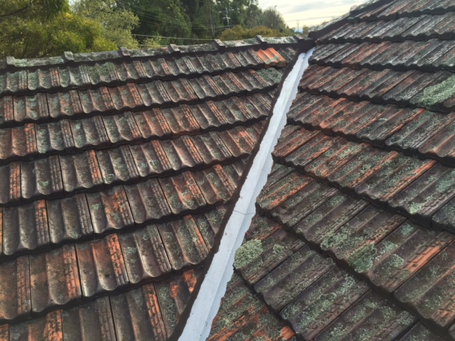 roof restoration wantirna